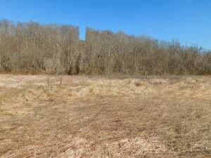 Absolute Meigs County Land Auction