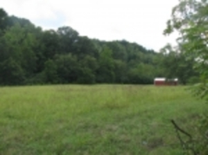 Jackson County Land Auction
