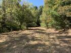 x18.04 Acres * Hunting & Recreation with Good Trails * Mostly Wooded * Good Cabin & Building Sites *