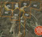 Combination of Parcels 7-14- 294.8 acres