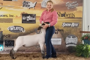 Grand Champion- Kendle, Adeline- Above and Beyond