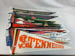 (22) college football pennants